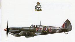 Spitfire L.F.IXe  -  43 Squadron RAF  -  CPM - 1939-1945: 2ème Guerre