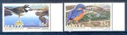 B37- Malta 1999. EUROPA. National Parks  Eisvogel Flussregenpfeifer. Naturschutzgebiet Simar. - Malta