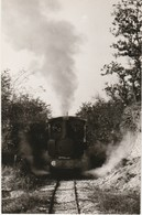 69 MEYZIEU VOIR DOS Chemin De Fer Touristique Train Locomotive à Vapeur Edition CFTM - Meyzieu
