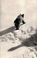 LES PYRENEES OURSON DANS LA NEIGE CPSM PAS CIRCULEE - Bears