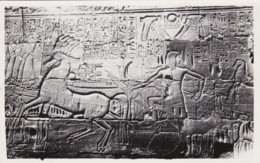 AN35 Karnak, Seti I Driving Back His Chariot From Syria - RPPC - Egypt