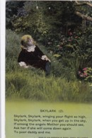 AP64 Bamforth Song Card - Skylark (2) - Postcards