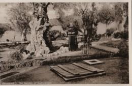 AQ50 Jerusalem, The Garden Of Gethsemani - RPPC - Israel