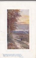 AO87 Tuck Oilette - Through The Woods - Trees
