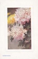 AO87 Tuck Oilette - Chrysanthemums - Flowers