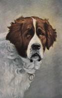 AS72 Animals - Dog, Artist Drawn - Chiens