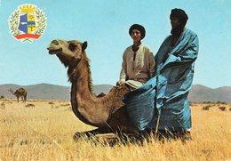 GOULIMINE-ARMOIRIES DE LA PROVINCIE D AGADIR-VIAGGIATA 1970  FG - Agadir