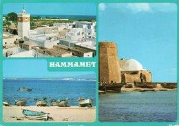 TUNISIA-HAMMAMET- VIAGGIATA 1981   FG - Tunisia