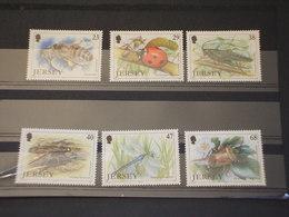 JERSEY - 2002 INSETTI 6 VALORI - NUOVI(++) - Jersey
