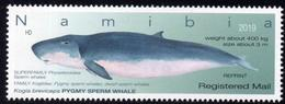 Namibia - 2019 Whales Registered Mail Reprint (**) - Whales