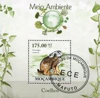 MOZAMBIQUE - Lapin - Konijnen