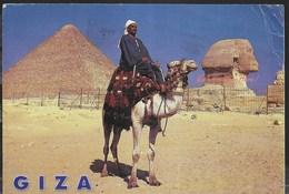 EGITTO - LE PIRAMIDI DI GIZA - FORMATO GRANDE 16,50X11,50 - VIAGGIATA 2006 - Gizeh