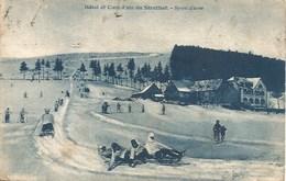 67 - Le Struthof - Cure D'air Et Hôtel - Sports D'hiver -  La Piste De Luges - Schirmeck