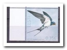 Estland 2011, Postfris MNH, Birds - Estland