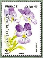 N° 5321** Violette - France