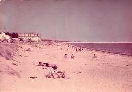 PIE.T.19-8352 : ILE DE NOIRMOUTIER. LA GUERINIERE. - Ile De Noirmoutier