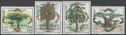 SOMALIE - Protection De La Forêt - Acacia Tortilis - Ficus Sycomorus - Terminalia Catapa - Adonsonia Digitata - Somalie (1960-...)