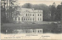 Wommelgem    *  Chateau D'Hulgenrode   (Hoelen,824) - Wommelgem