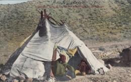 Desert Native American Indian 'Summer Villa' Home C1900s/10s Vintage Postcard - Native Americans