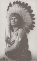 Chief Black Wolf Cheyenne Native American Indian C1930s Vintage Arcade Card - Picture Cards