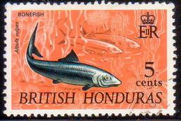 British Honduras 1972 SG #339 5c Used Wmk Mult.Crown Block CA Upright - British Honduras (...-1970)