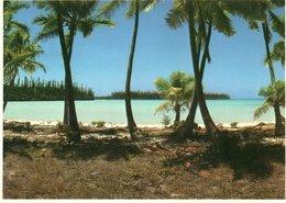 BEACH OF NEW CALEDONIE- VIAGGIATA     FG - Nuova Caledonia