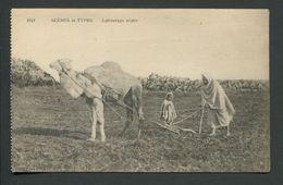 CPA  SCENES  ET TYPES  -  LABOURAGE ARABE - Argelia