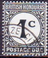British Honduras 1964 SG #D1b 1c Used Postage Due CV £40 White Uncoated Paper - British Honduras (...-1970)