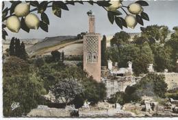 Rabat - Vestiges Du Chellah Et Minaret De L'Ancienne Mosquée - Photo Cap Nr 974 - Rabat