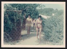 Photo Ancienne 1968 Snapshot 12 X 9 - Femmes En Bikini Sh99 - Anonymous Persons