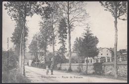 CPA -  Belgique, GRAND HALLEUX, Route De Vielsalm - Vielsalm