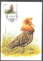 CM 3140 - Oiseau Buzin - Combattant Varié - Maximum Cards