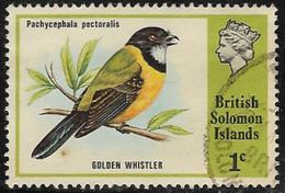 British Solomon Islands SG267 1975 Birds 1c Good/fine Used [40/32584/2D] - Isole Salomone (...-1978)