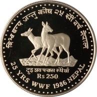 Népal, 250 Rupees 1986 - Silver Proof - Népal