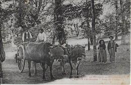 ENVIRONS D'ARDOUANE ( Hérault Pittoresque Et Artistique ): Scène Des Champs Avec Attelage De Boeufs (1921) - Autres Communes