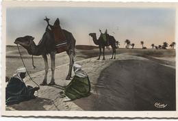 Egyptian Scenes And Types - Halte Au Désert - Arabs And Camels  Kamelen - Ed. Prouho Combier Nr 1040 - Personas