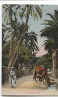 Egyptian Scenes And Types - Paysage Du Sud  - Arabs And Camels  Kamelen Palmiers  - Ed. Idéale Nr 1002 - Personas