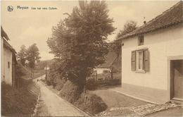 Meise - Meysse   *  Une Rue Vers Ophem - Meise