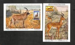 CONGO BELGE - BELGISCH CONGO - 2 Cartes MAXIMUM 1959 - L'Antilope Chevaline - L'Impala - Belgisch-Kongo