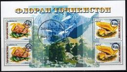 Tajikistan 2018 Flora Mushrooms Black OVPT 10.00 SS MNH - Hongos
