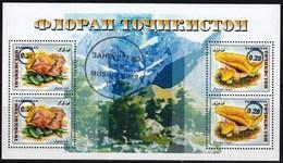 Tajikistan 2018 Flora Mushrooms Blue OVPT 10.00 SS MNH - Hongos