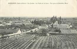 CPA 37 Indre Et Loire Bourgueil Les Jardins La Vallée De La Loire Vue Prise Du Belvédère Méon Vignes - Francia