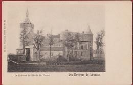 Le Chateau De Rhode St. Saint Pierre Sint-Pieters-Rode Holsbeek Kasteel Van Horst (In Zeer Goede Staat) - Holsbeek