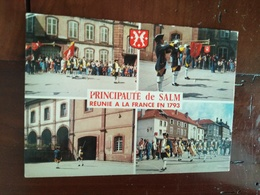 88 - Principauté De Salm Senones - La Relève De La Garde De Salm - Multivues - Senones