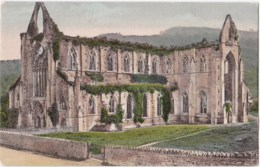 AL08 Tintern Abbey - Monmouthshire