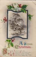 AQ51 Greetings - A Joyous Christmas - Snow Scene, Holly - Christmas