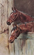 AS73 Animals - Horses - 2 Brown Horses In Stables - Artist Signed - Chevaux