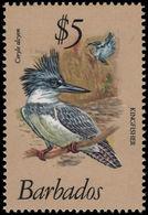 Barbados 1979 $5 Belted Kingfisher Unmounted Mint. - Barbados (1966-...)
