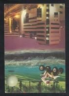 United Arab Emirates Renaissance Dubai Hotel Picture Postcard U A E UAE - Dubai