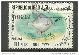 Iraq - 1975 Fish Official Overprint 10f Used  Sc O312 - Iraq